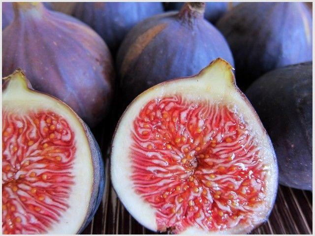 food4fun - Figy, ovocie s históriou
