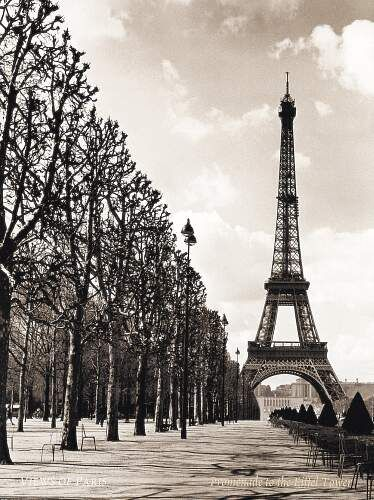 ~Vintage eiffel tower
