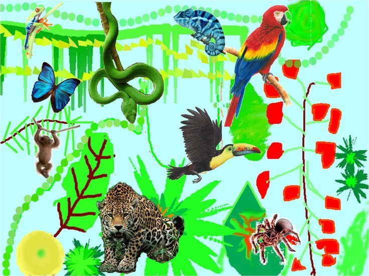 Bertie's Jungle