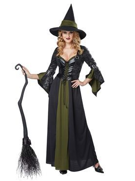 Adult Classic Witch Costume by Fancy Dress Ball