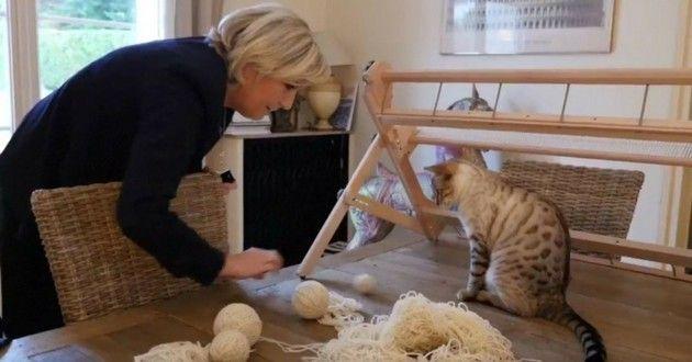 """Marine Le Pen chats  - Interview exclusive de Marine Le Pen : """"La protection animale, une priorité de mon quinquennat"""""""