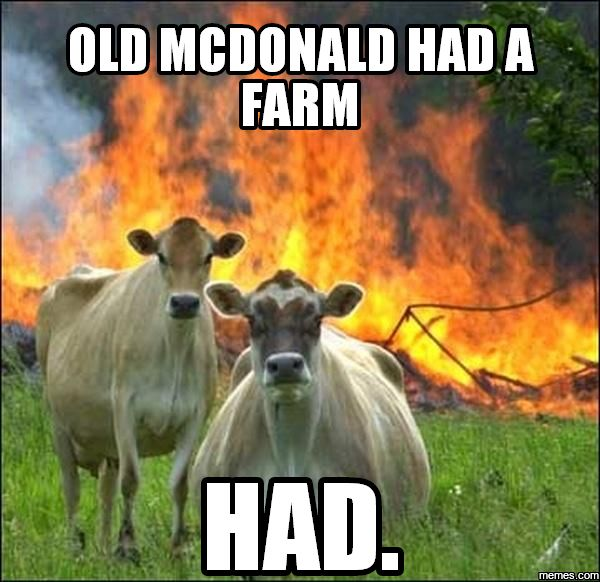 Funny Farm Animals Meme : Best images about funny on pinterest jenna dewan
