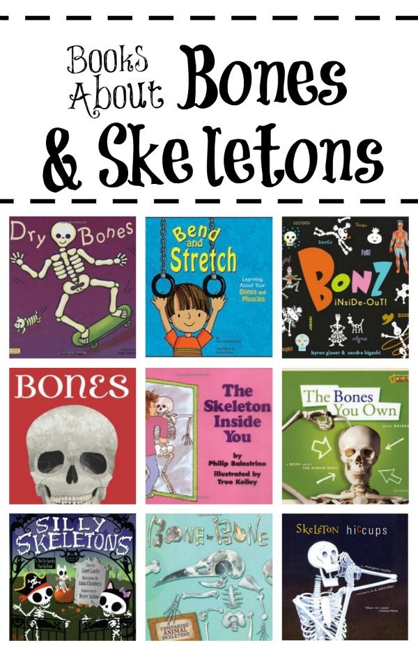 Books About Bones and Skeletons~Read about bones and what they do with these fun books for kids.