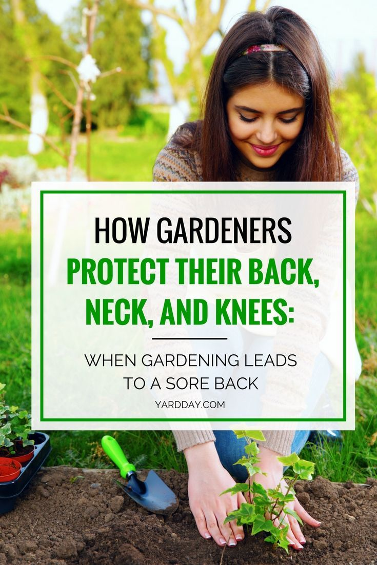 Gardening Is Good Exercise And Can Be Very Therapeutic There Is