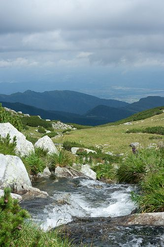 Mountain spring   Retezat mountains, Romania
