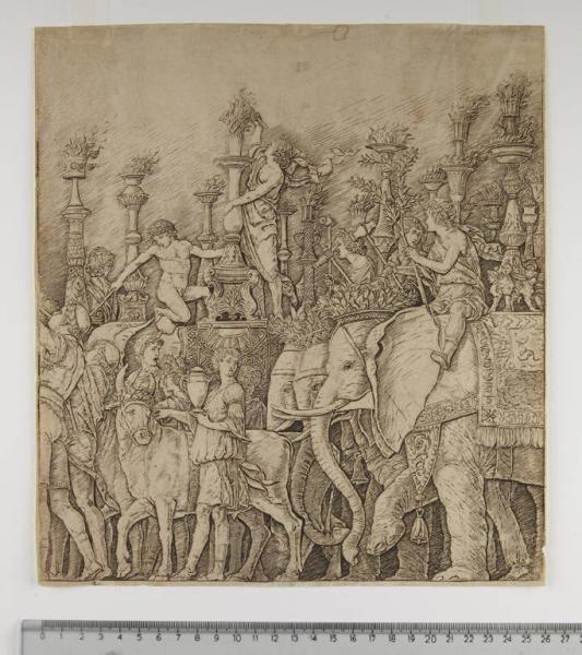 Gli elefanti Andrea Mantegna, 1948 bulino - Musei Civici di Pavia
