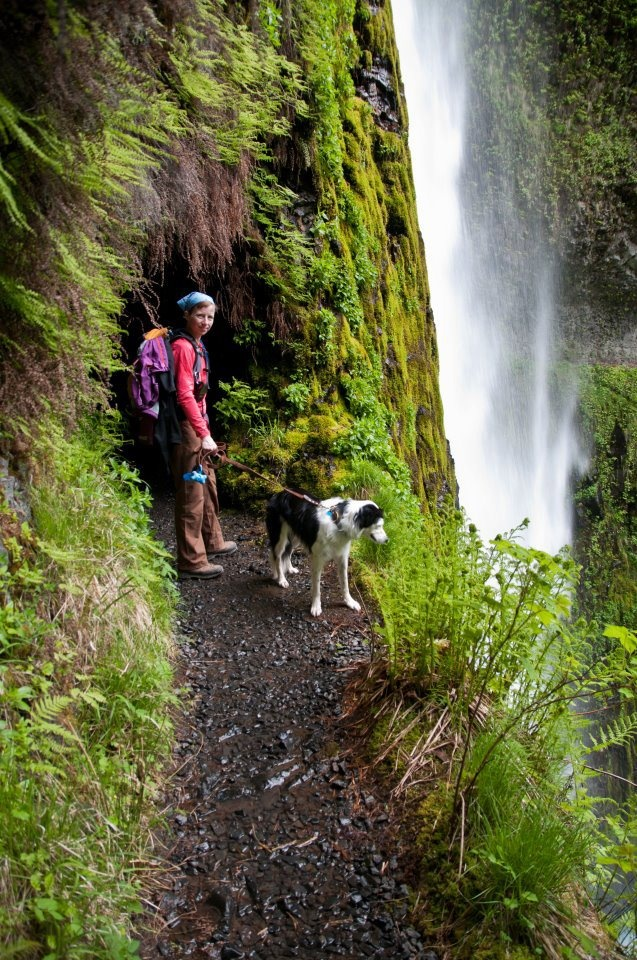 Maggie at Tunnel Falls, Oregon: Pnw, Dogs And Kids