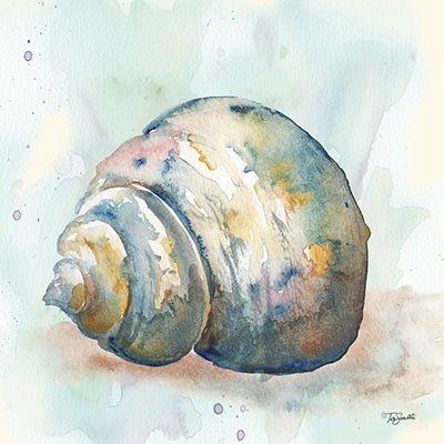 Watercolor.Shells.-.04.of.08.-.Tre.Sorelle.Studio
