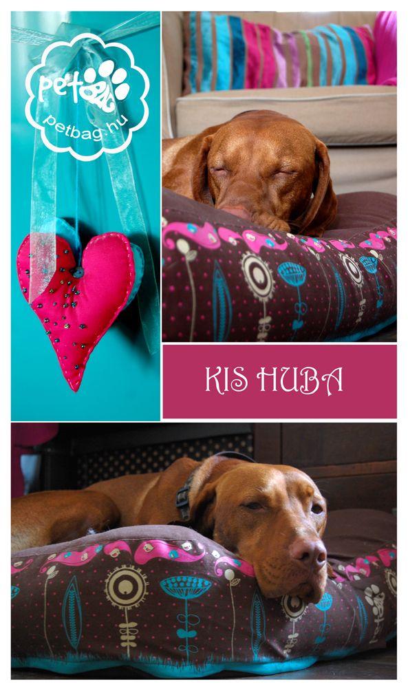 PetBag kutyafekhely/ dog bed vizsla / http://petbag.hu/
