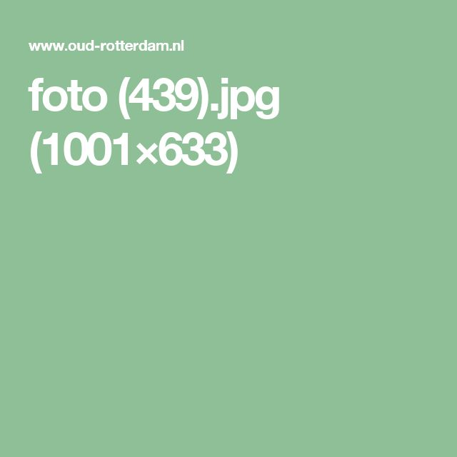 foto (439).jpg (1001×633)