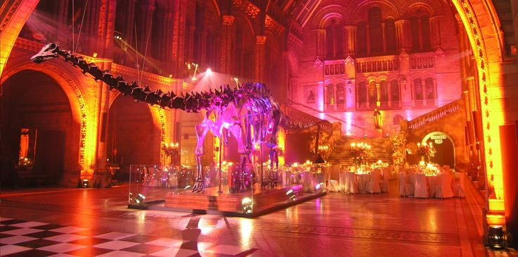 Why Not Have Your Wedding At The Natural History Museum Http Www Curryspecial Co Uk Asp Venues Pinterest