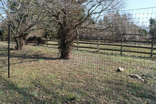 17 Best Ideas About Deer Fence On Pinterest Fence Garden