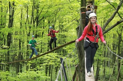 Scenic Caves Nature Adventures    Treetop canopy walking and ziplining