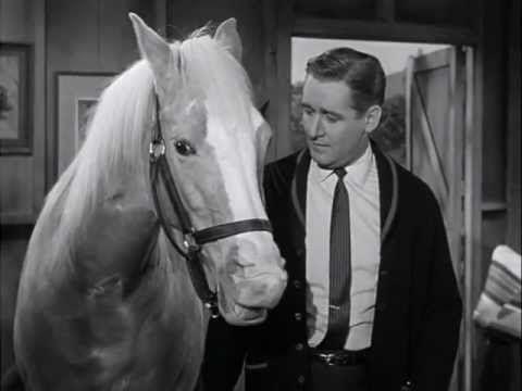 Mister Ed S3 | Horse Talk (+playlist)