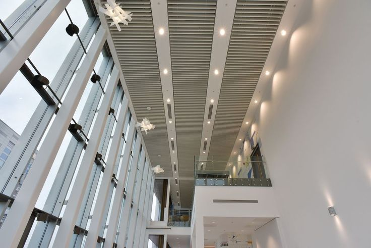 National Biologics Manufacturing Centre, Darlington, Armstrong Sufity Podwieszane, suspended ceiling, acoustic, sufit akustyczny, office