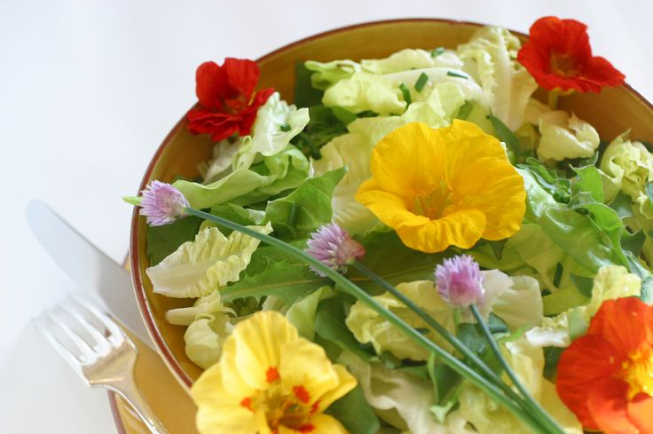 Quick Guide to Edible Flowers