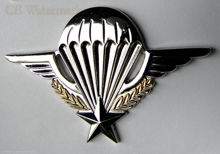 FRANCE PARATROOPER FRENCH LARGE JUMP WINGS LAPEL PIN BADGE 2.75 INCHES