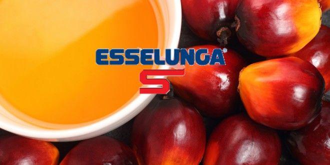 Esselunga: Caprotti dice addio all'olio di palma. Sugli scaffali biscotti, grissini e crackers senza olio tropicale. Il prezzo non cambia