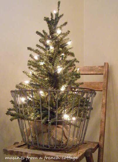 20 best small Christmas trees images on Pinterest