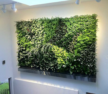 office adas features lime. Indoor Living Wall Office - Google Search Adas Features Lime