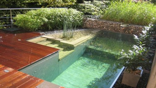 """Modern Natural Pool: ''Natural swimming pools are a chemical free alternative to the conventional , chemically treated pool of today. Quite simply, they are a man-made, self contained eco-system maximizing natures natural process for obtaining clean, clear water."""""""