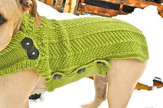 Nala Needs a Coat large dog sweater