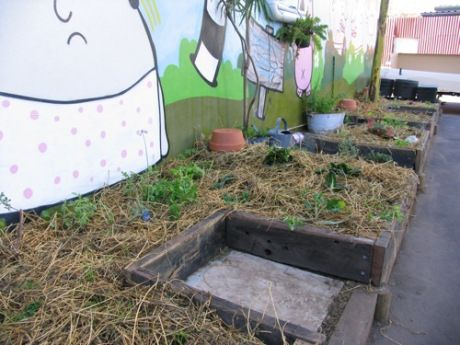 Maybe A Good Idea For Our Home Vegetable Scraps Instead Of Burying In The  Compost Pile?(How To Make Good Ideas)