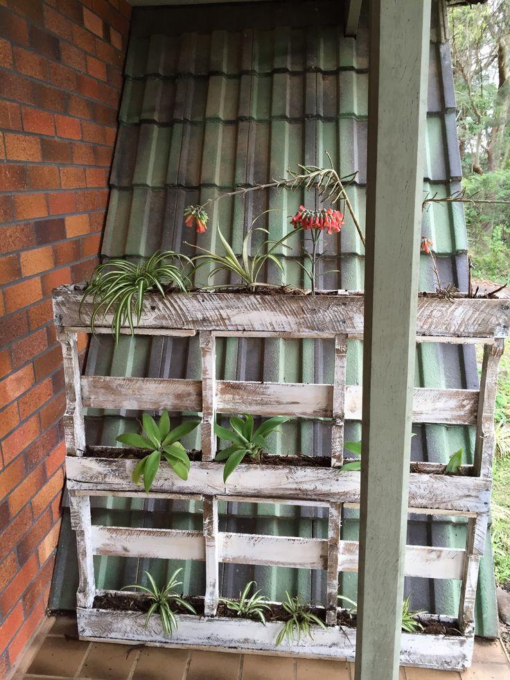 wooden pallet planter  By Bron Lowe @ Projectguru.com.au