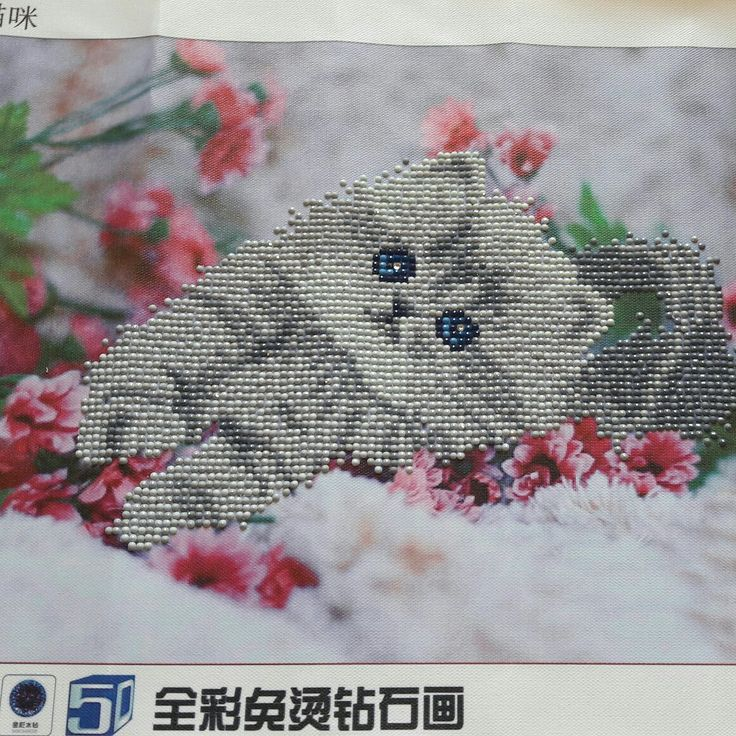 Diamond painting kattunge