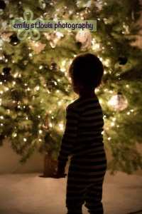 Toddler Christmas Photo