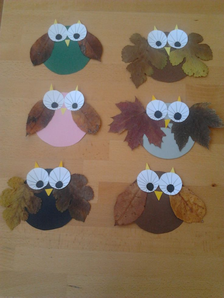 Fall Owls with Leaves