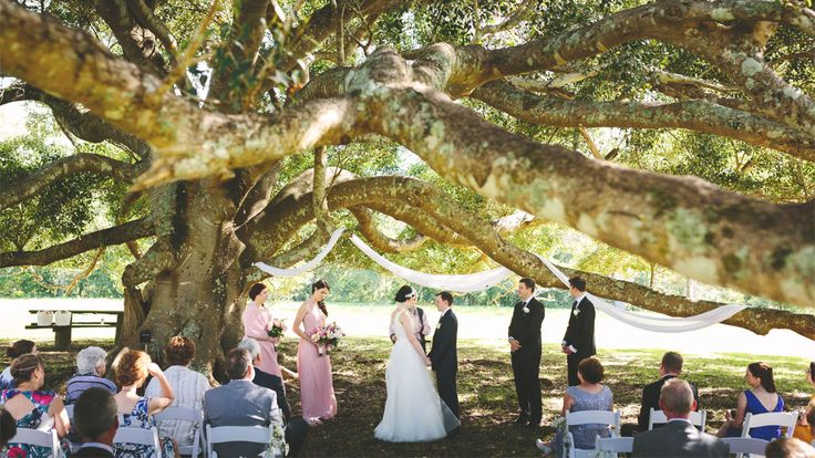 Finding Love Under The Fig Tree | Fernbank Farm | Central Coast Wedding & Event Venue