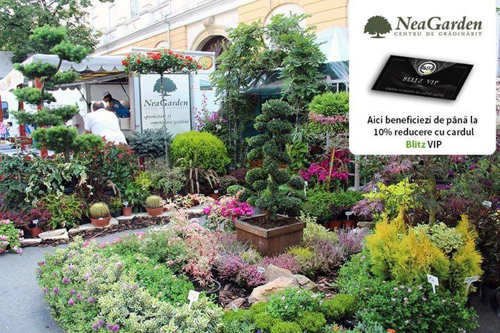 """Este timpul să ne decorăm balconul cu flori rezistente la temperaturile de afară. La Nea Garden Center găsești plante în ghiveci pentru interior și exterior plante pentru grădină cât și scoarță decorativă piatră și alte accesorii care să-ți înfrumusețeze priveliștea și implicit ziua.  În plus cu cardul amenajezi și economisești deoarece beneficiezi de până la 10% discount.  Detalii pe www.blitz.ro/vip la categoria """"florării și peisagistică""""."""