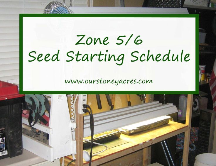 Here's a great Zone 5/6 Seed Starting Schedule. If you live in these gardening zones you can use this post as a guide for when to plant your seedlings.:
