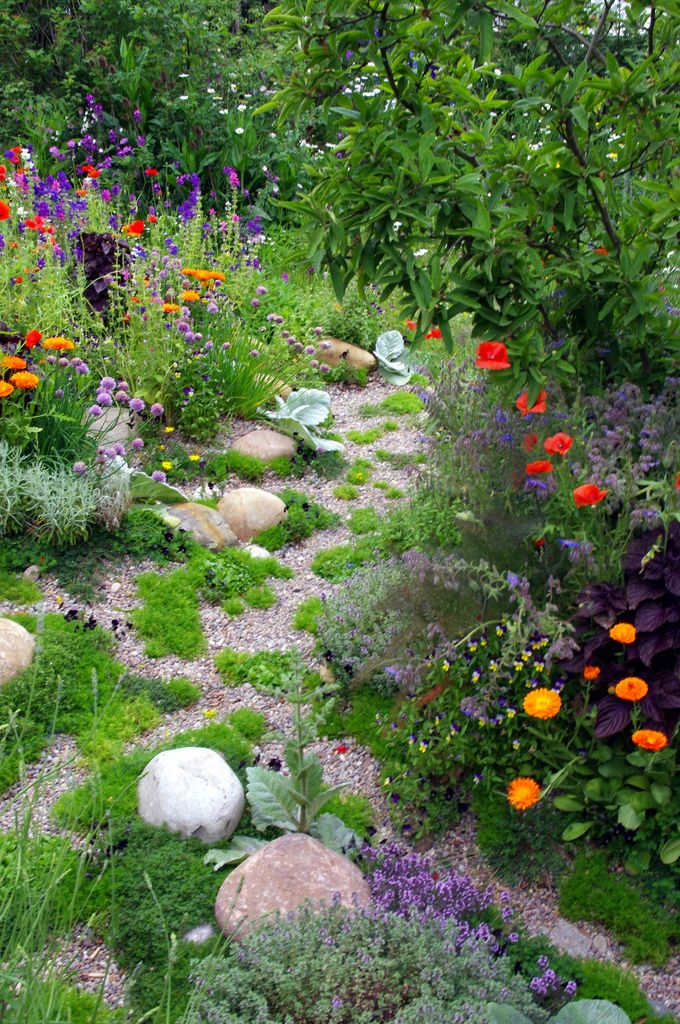 Skyshades Garden, Chelsea. -love the bright orange zinnias next to the dark purple foliage.