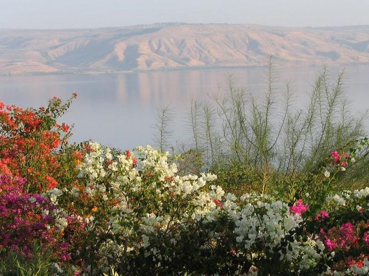 "Sea of Galilee from Mt. of Beatitudes --Traveling to Israel and other lands of the Bible is a lifetime investment in my""faith walk"" with God. #TreatYourself #Shopkick"