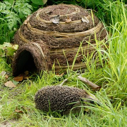 Igloo Hogitat £25.99 Who wouldn't want a little Hedgehog snuffling around in the garden? This provides the perfect home for #hedgehogs! #wildlife #nature