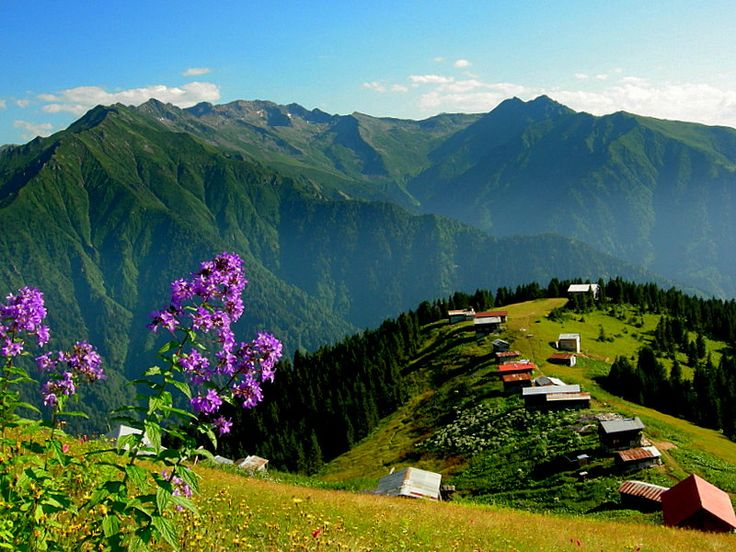 Mountains, houses and flowers in Karadeniz (Black Sea Region), North Turkey