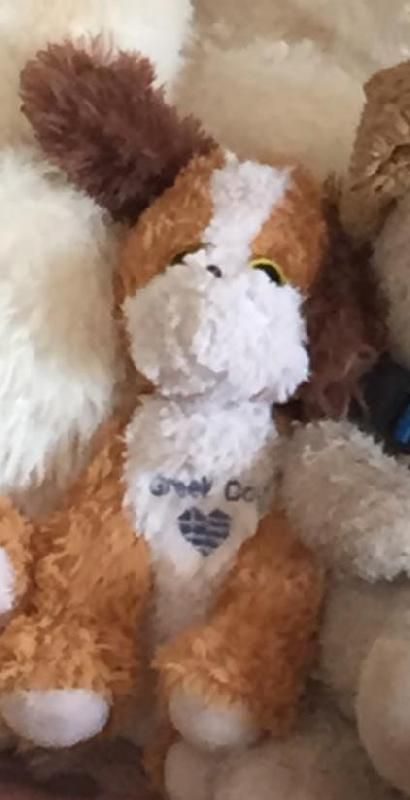 "Lost on 08 Jun. 2015 @ Oia, Santorini, Greece. ow we are desperately trying to find ""Greece"". My 4yo bought him with her pocket money in Oia, Santorini, Greece while on holidays in 2015. It was from a little corner store on the Main Street ... Visit: https://whiteboomerang.com/lostteddy/msg/34vzdu (Posted by Lauren on 30 Apr. 2016)"