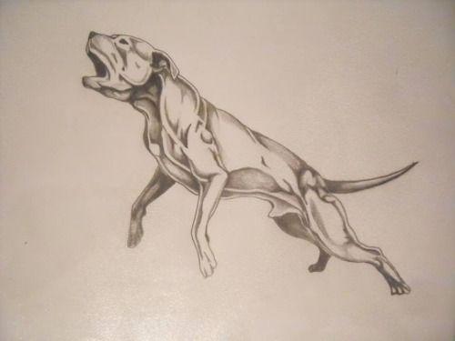 apbt:  art#pitbulls #dog breeds #canine pet #dogs #pitbull puppy #pitbull dog #pitbull breeds #red nose pitbull #pitbull terrier #apbt #staffordshire terrier #amstaff #english terrier #black pitbull #moo moo pit #chocolate pitbull #pitbull poodle #blue nosed pit #pitbull mutt #mans best friend #4 month old pitbull