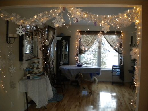 Christmas Light Decoration Ideas For Birthday Party