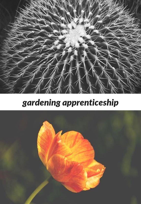 Gardening Apprenticeship 70 20181111115439 53 Mayday Demonstration Guerrilla Gardening 2000 C Organic Horticulture Amazing Gardens Childrens Gardening Set
