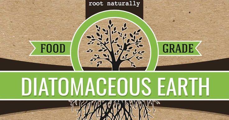 diatomaceous earth garden from:plantcaretoday.com