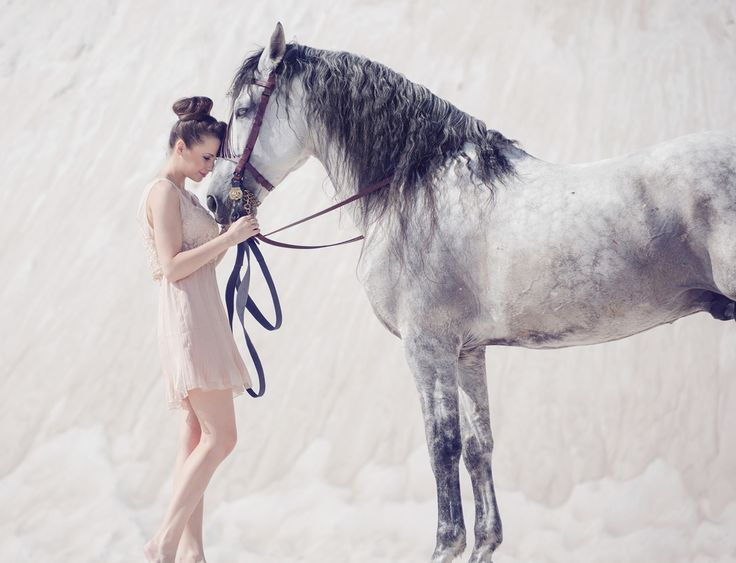 39 39 Marry Me And I 39 Ll Never Look At Another Horse 39 39 Groucho Marx The Equine People