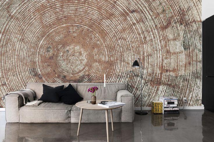 wallpaper INNER CIRCLE brown