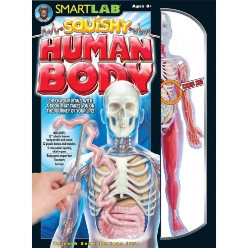 You explore It Human Body. is a hands-on kit and tour guide allowing kids to explore the human body! $38.00 #educationaltoys #sciencetoys #kids #toys