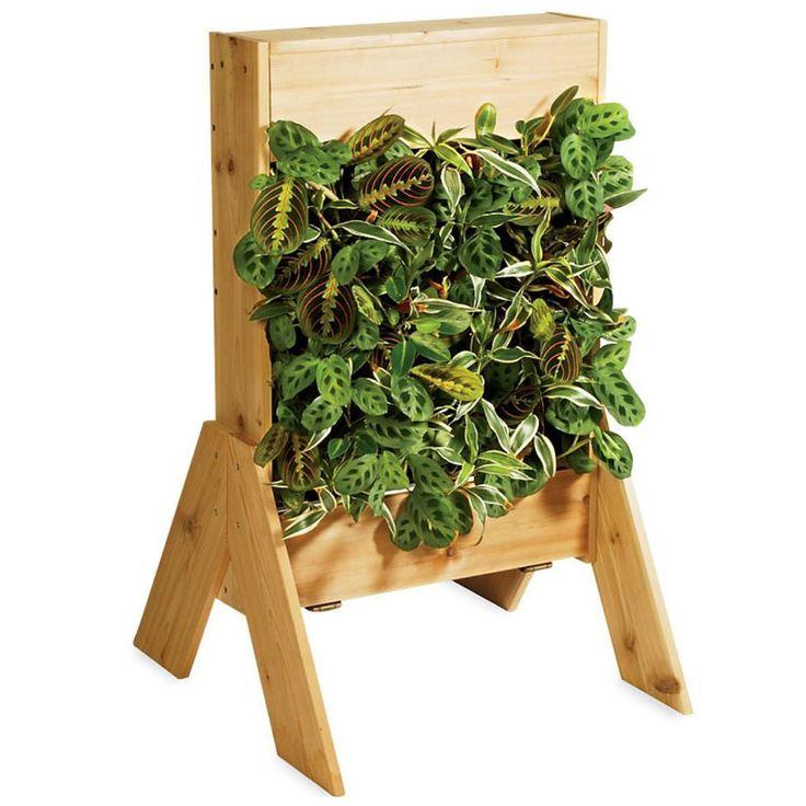 Best 25+ Living wall planter ideas on Pinterest | Vertical plant ...