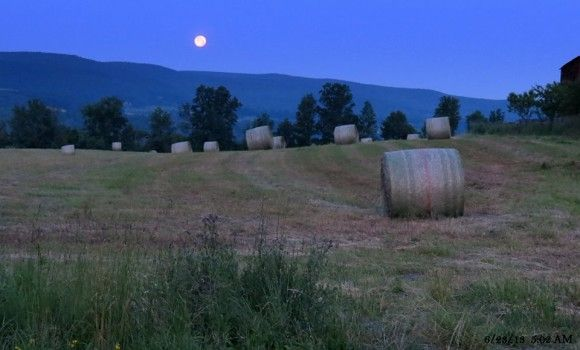 Good-bye Super Moon. Last night's Full Moon sets in the West early this morning just before the Sunrise. Schoharie County, New York Photo credit: Pat Quinn