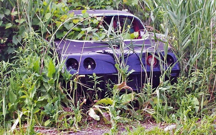 Corvette Graveyard in Upstate New York - http://barnfinds.com/corvette-graveyard-in-upstate-new-york/