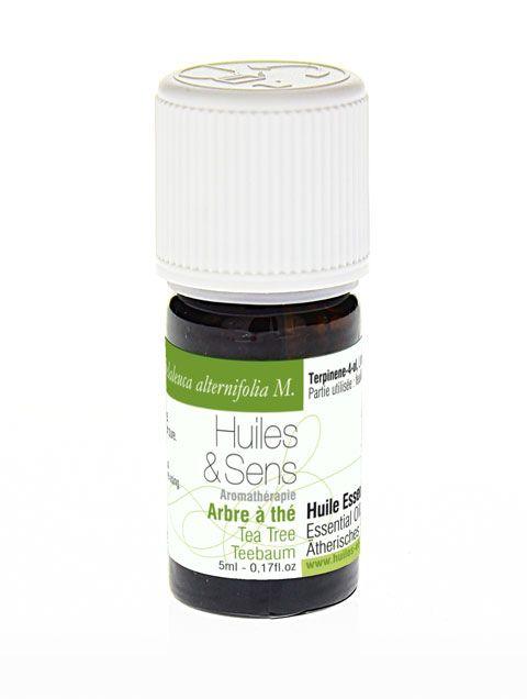 Huile essentielle d'arbre à thé, tea tree - Huiles & Sens Aromathérapie